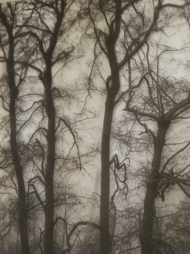 Fotocollage, materiaal: foto op folie, calcopapier, 20 x 30 cm